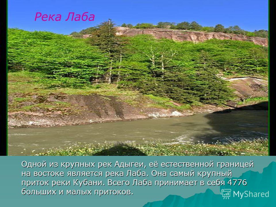 Река Лаба Одной из крупных рек Адыгеи, её естественной границей на востоке является река Лаба. Она самый крупный приток реки Кубани. Всего Лаба принимает в себя 4776 больших и малых притоков.