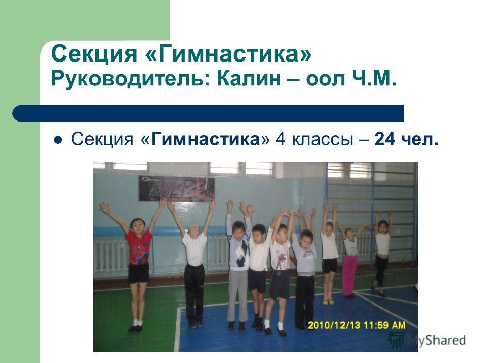 Секция «Гимнастика» Руководитель: Калин – оол Ч.М. Секция «Гимнастика» 4 классы – 24 чел.