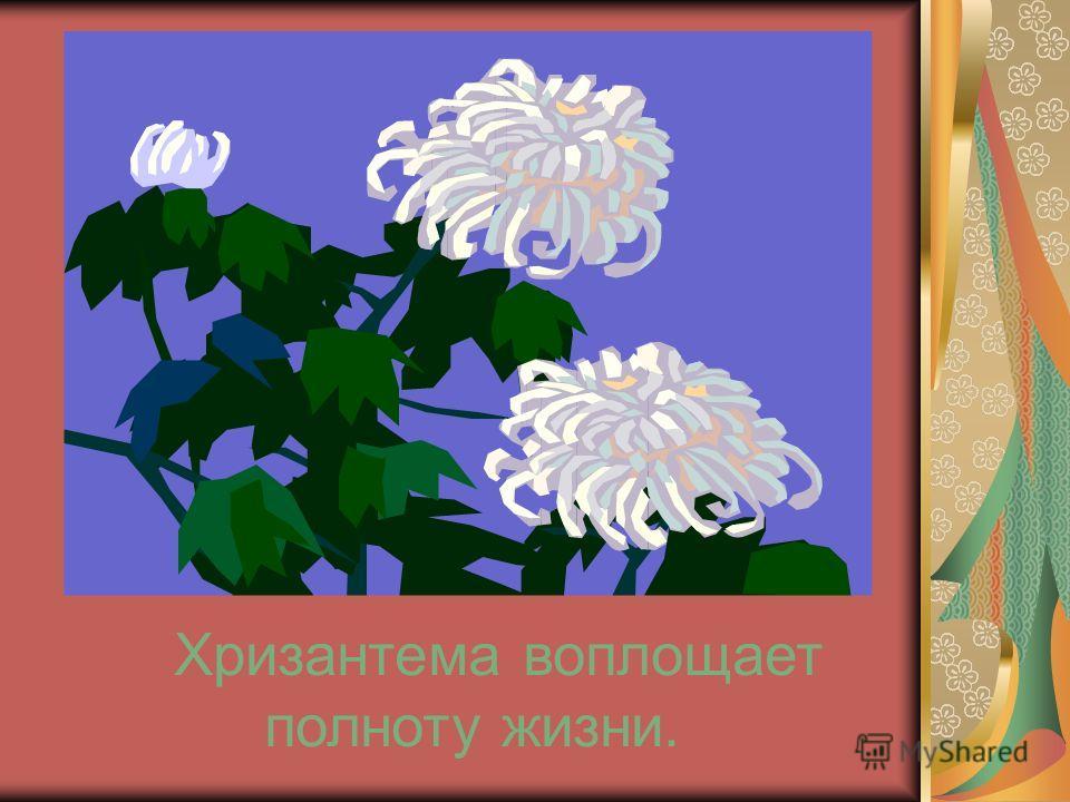 Хризантема воплощает полноту жизни.