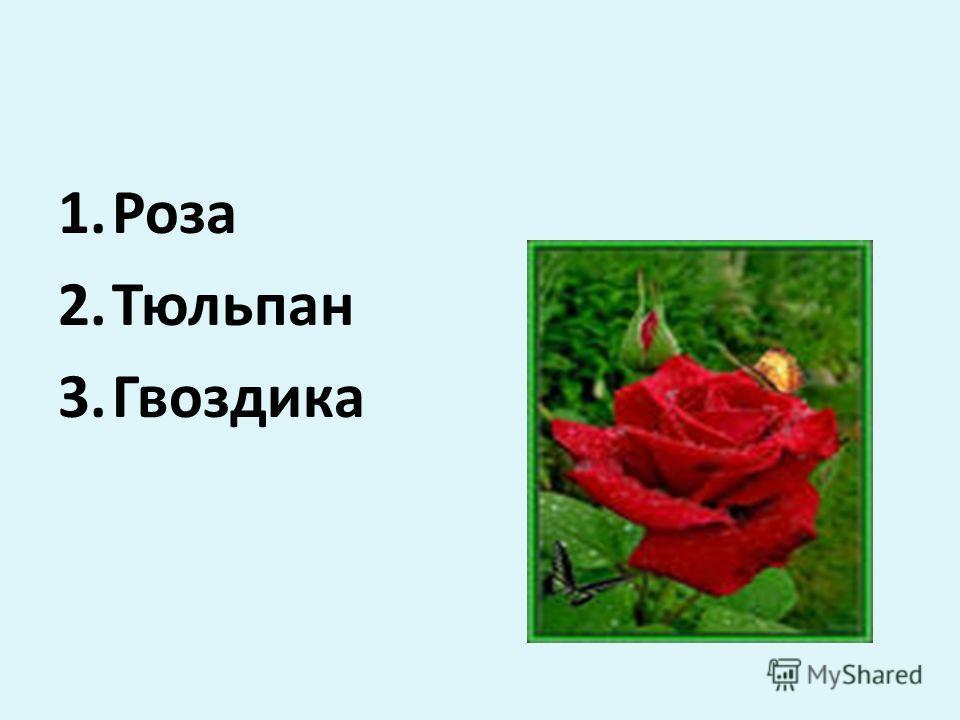 1.Роза 2.Тюльпан 3.Гвоздика