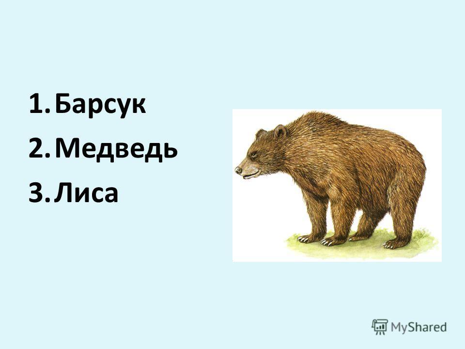 1.Барсук 2.Медведь 3.Лиса