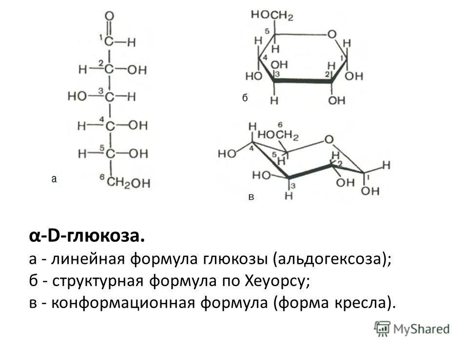 α-D-глюкоза. а - линейная формула глюкозы (альдогексоза); б - структурная формула по Хеуорсу; в - конформационная формула (форма кресла).