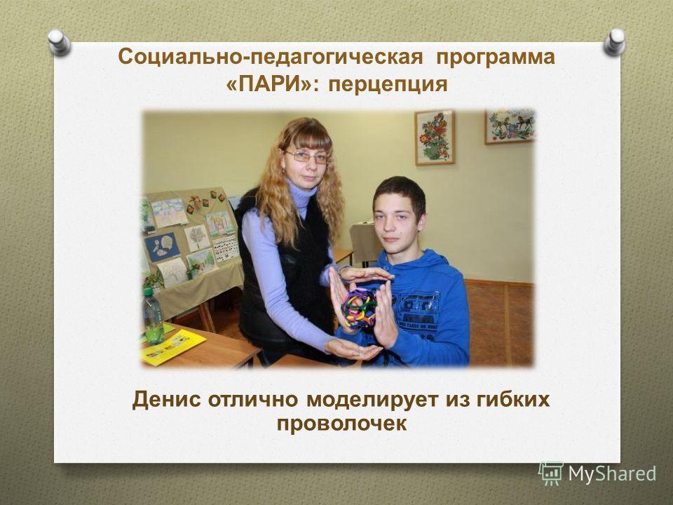 Социально-педагогическая программа «ПАРИ»: перцепция Денис отлично моделирует из гибких проволочек