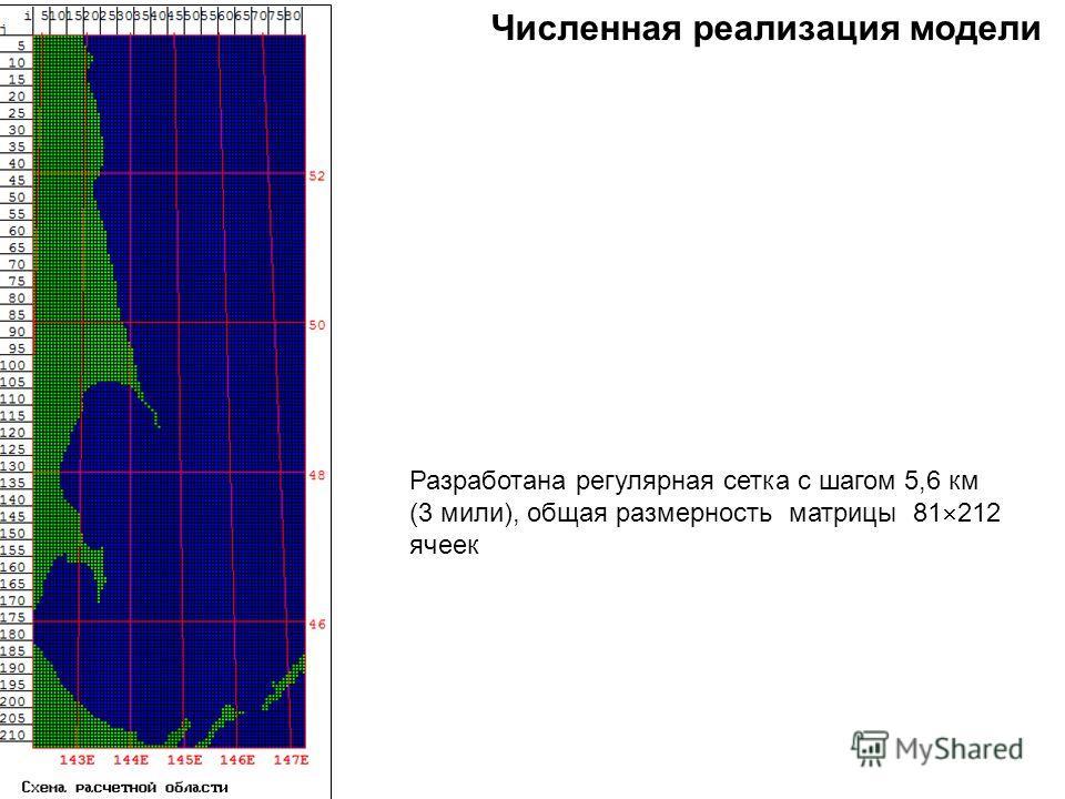 Численная реализация модели Разработана регулярная сетка с шагом 5,6 км (3 мили), общая размерность матрицы 81 212 ячеек