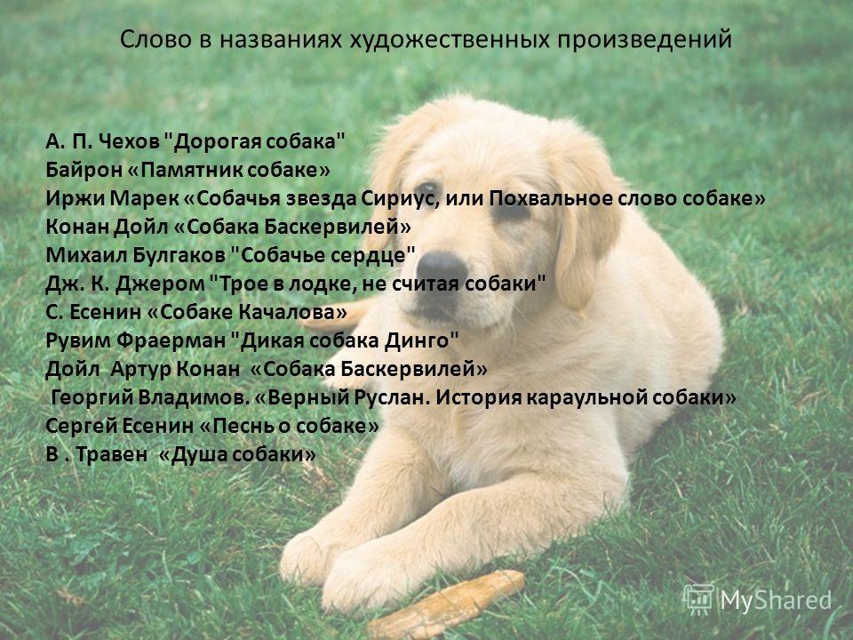 Слово в названиях художественных произведений А. П. Чехов