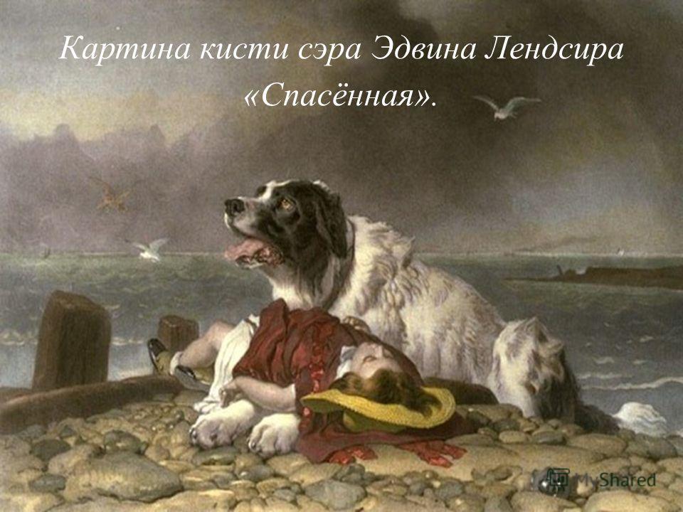 Картина кисти сэра Эдвина Лендсира «Спасённая».