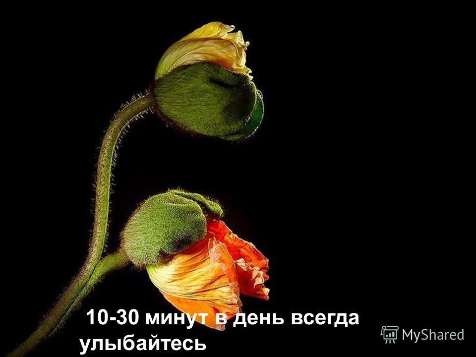 Может ли работа человека быть ближе, чем Красота природы? Или музыка! 05-2010 Translated from Hebrew By David Sherman