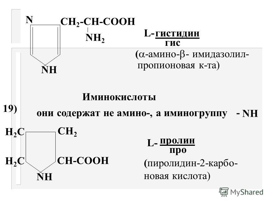 СН 2 -СН-СООН NН2NН2 L- ОН тирозин тир ( -амино- - параокси- фенилпропионовая к-та) 17) б) Гетероциклические NН СН 2 -СН-СООН NН2NН2 L- триптофан три ( -амино- - индолил пропионовая к-та)