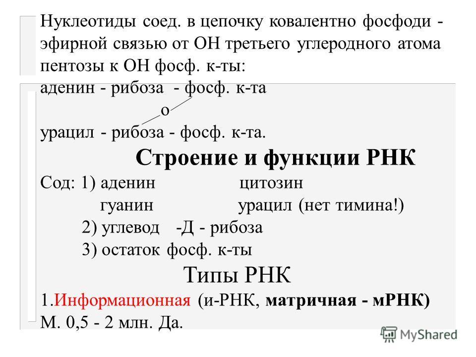 Строение и функции нуклеиновых к-т Нукл. к-ты- высокомолекул. биополимеры состоящие из мононуклеотидов, кот.сод. 3 компонента: 1)азотистые основания (пуриновые - аденин и гуанин и пиримидиновые - цитозин, тимин, урацил). 2) углеводы ( Д - рибоза или