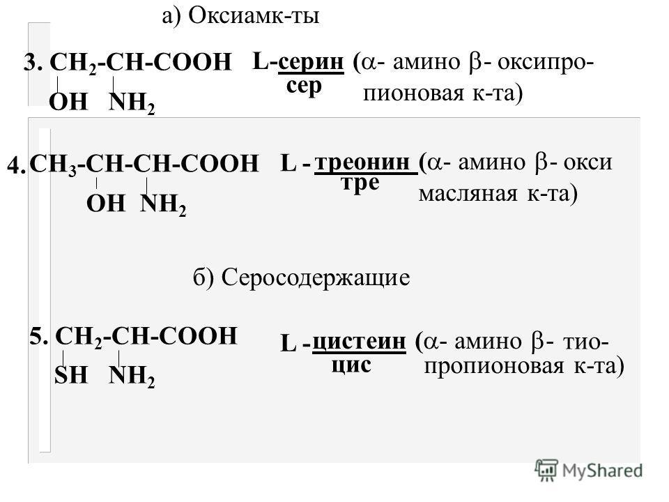 Классификация амк-т, их строение и номенклатура По характеру радикала их делят на: I. Ациклические (производные жирного ряда) II. Циклические ( производные ароматического ряда) I Ациклические По количеству СООН и NН 2 групп подразделяются на: Моноами