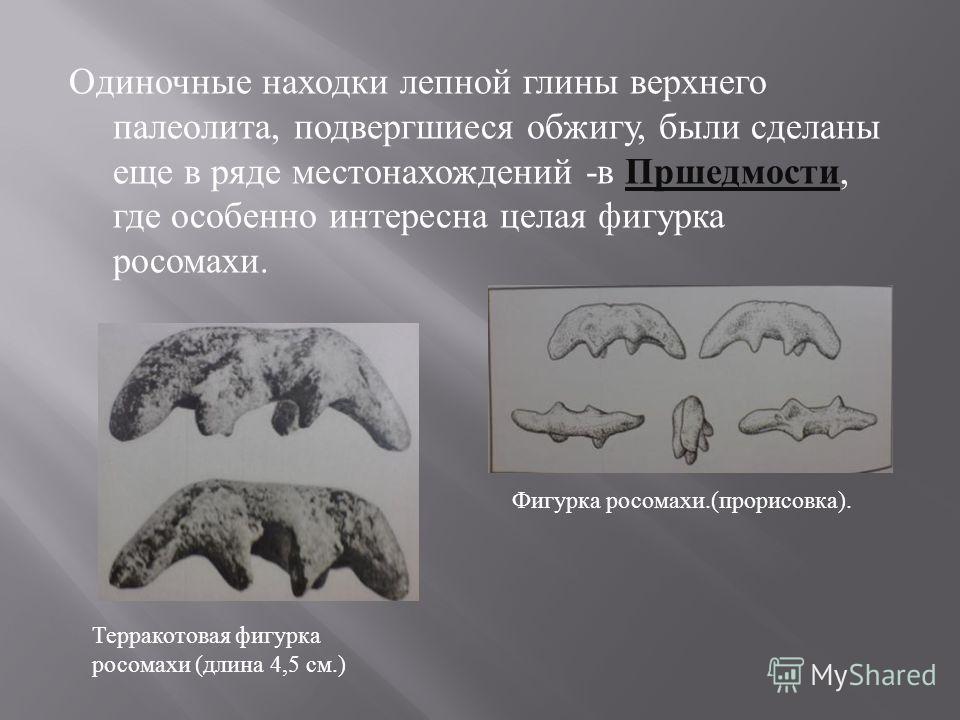 Одиночные находки лепной глины верхнего палеолита, подвергшиеся обжигу, были сделаны еще в ряде местонахождений - в Пршедмости, где особенно интересна целая фигурка росомахи. Терракотовая фигурка росомахи (длина 4,5 см.) Фигурка росомахи.(прорисовка)