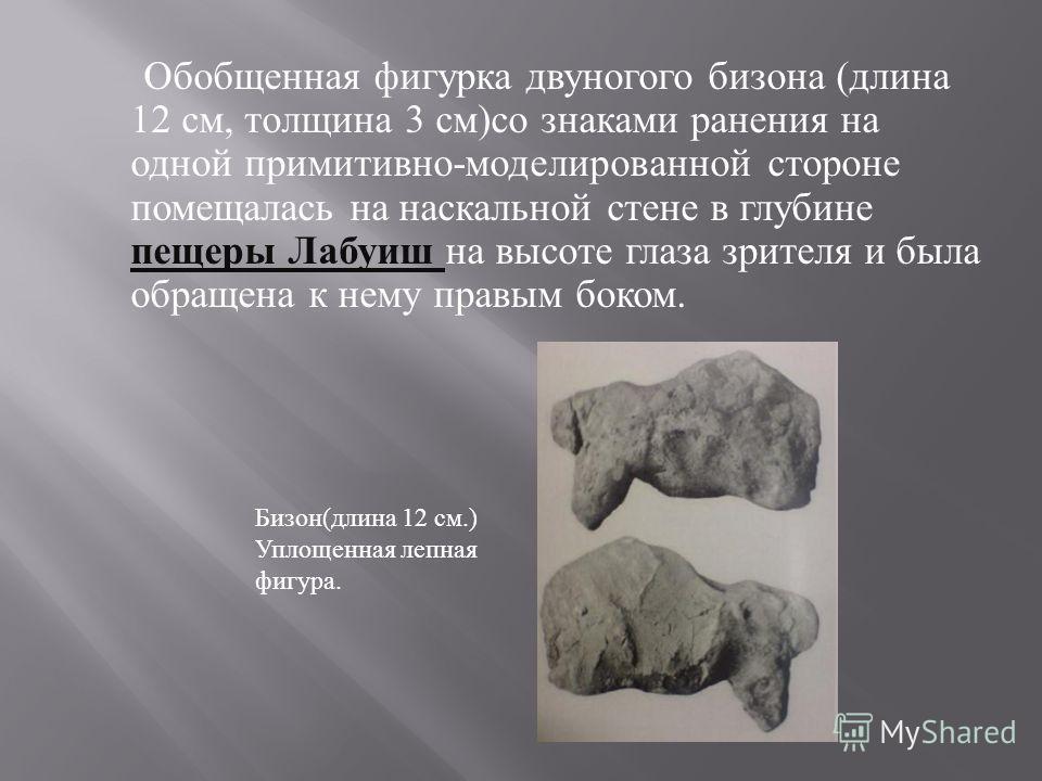 Обобщенная фигурка двуногого бизона ( длина 12 см, толщина 3 см ) со знаками ранения на одной примитивно - моделированной стороне помещалась на наскальной стене в глубине пещеры Лабуиш на высоте глаза зрителя и была обращена к нему правым боком. Бизо