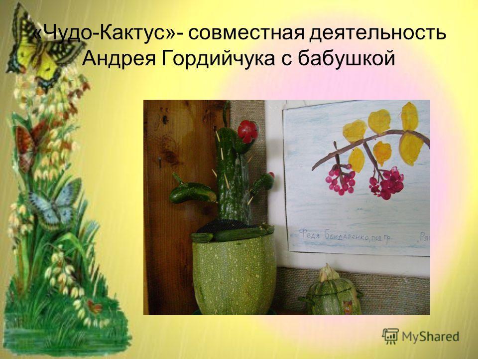 «Чудо-Кактус»- совместная деятельность Андрея Гордийчука с бабушкой