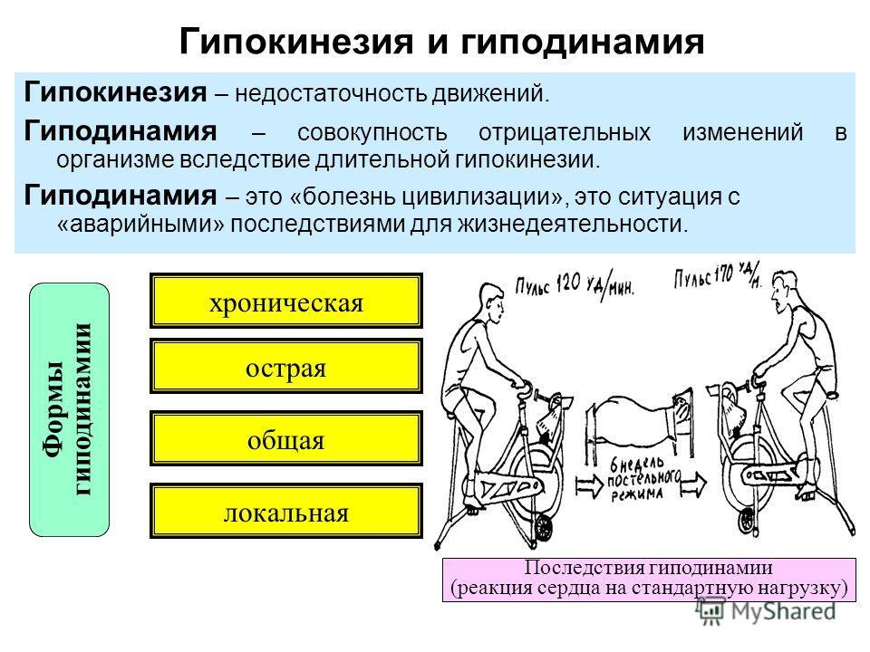 Гипокинезия и гиподинамия Гипокинезия – недостаточность движений. Гиподинамия – совокупность отрицательных изменений в организме вследствие длительной гипокинезии. Гиподинамия – это «болезнь цивилизации», это ситуация с «аварийными» последствиями для