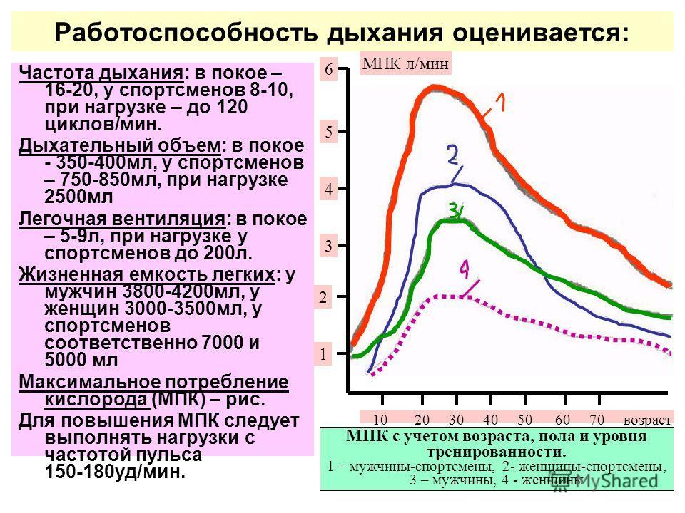 Работоспособность дыхания оценивается: Частота дыхания: в покое – 16-20, у спортсменов 8-10, при нагрузке – до 120 циклов/мин. Дыхательный объем: в покое - 350-400мл, у спортсменов – 750-850мл, при нагрузке 2500мл Легочная вентиляция: в покое – 5-9л,