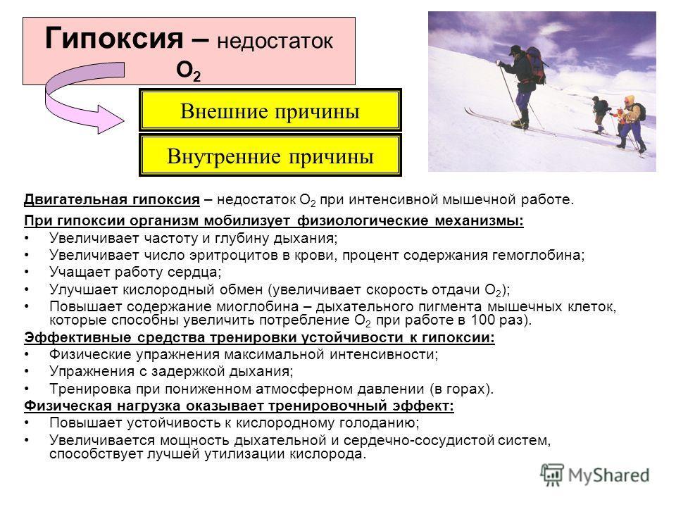 Гипоксия – недостаток О 2 Двигательная гипоксия – недостаток О 2 при интенсивной мышечной работе. При гипоксии организм мобилизует физиологические механизмы: Увеличивает частоту и глубину дыхания; Увеличивает число эритроцитов в крови, процент содерж