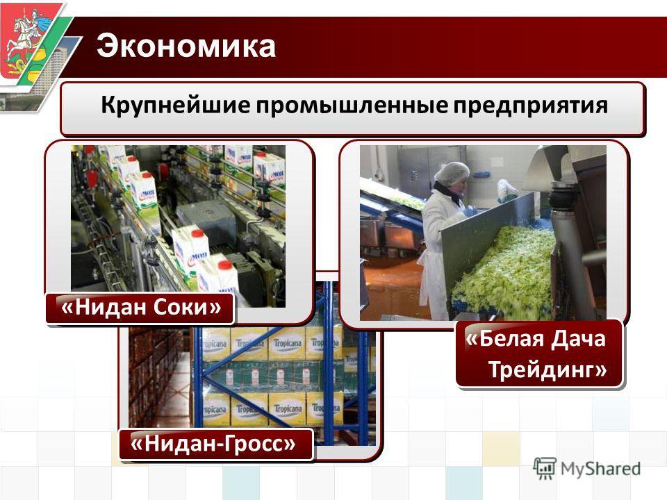 Экономика Крупнейшие промышленные предприятия «Нидан Соки» «Нидан-Гросс» «Белая Дача Трейдинг»