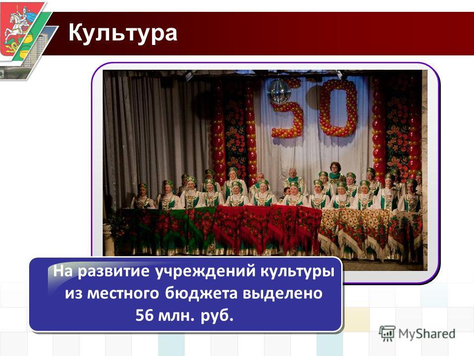 Культура На развитие учреждений культуры из местного бюджета выделено 56 млн. руб.
