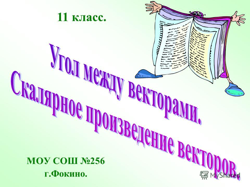 МОУ СОШ 256 г.Фокино. 11 класс.