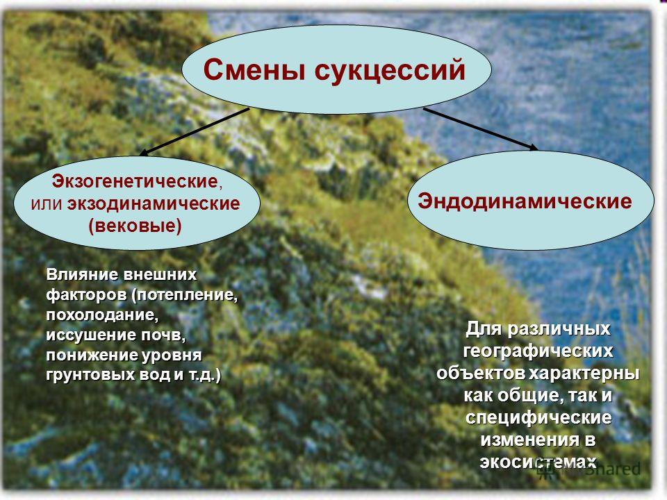 Смены сукцессий Экзогенетические, или экзодинамические (вековые) Эндодинамические Влияние внешних факторов (потепление, похолодание, иссушение почв, понижение уровня грунтовых вод и т.д.) Для различных географических объектов характерны как общие, та