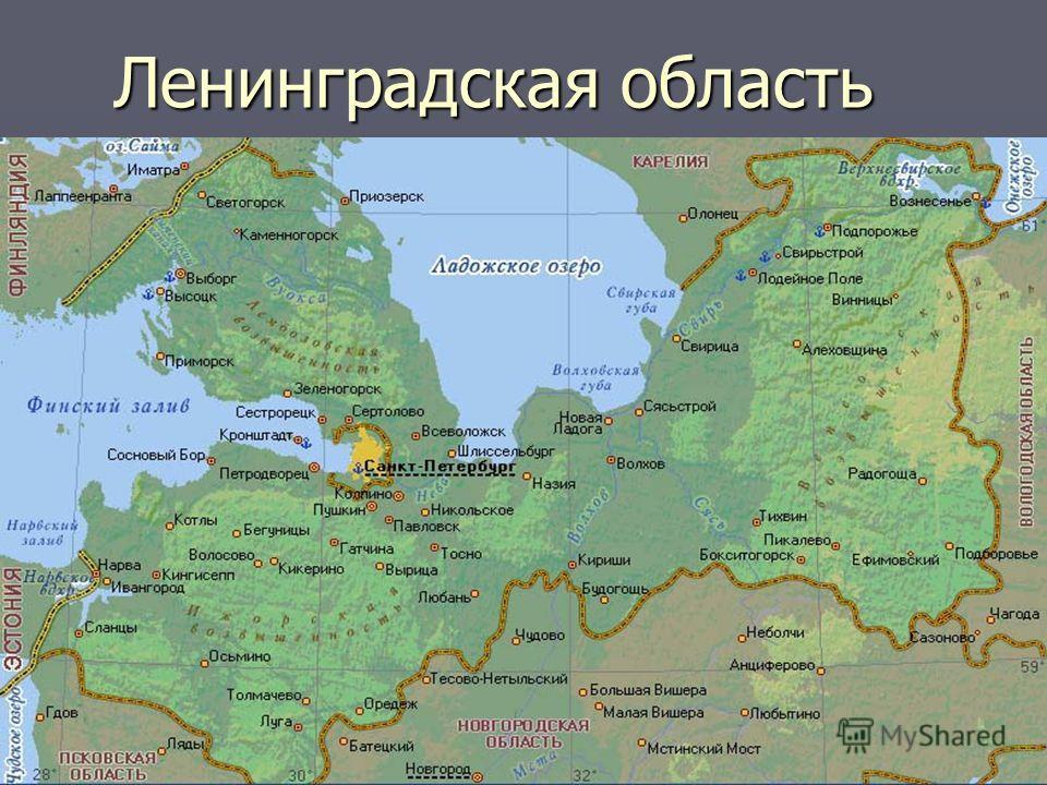 Ленинградская область Ленинградская область