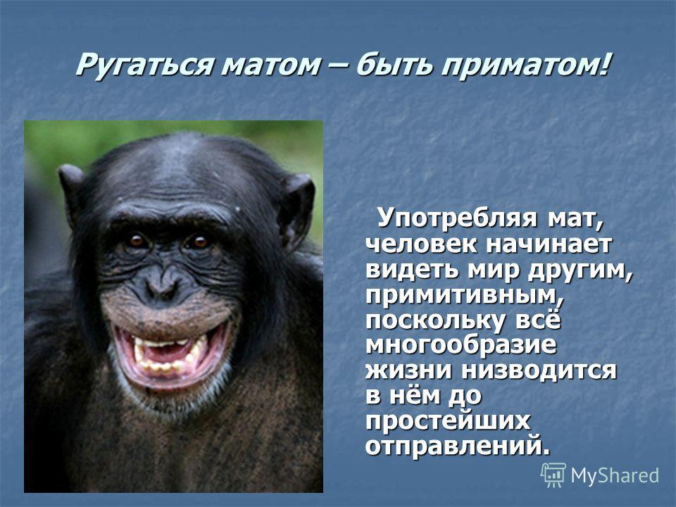 Ругаться матом – быть приматом! Употребляя мат, человек начинает видеть мир другим, примитивным, поскольку всё многообразие жизни низводится в нём до простейших отправлений. Употребляя мат, человек начинает видеть мир другим, примитивным, поскольку в