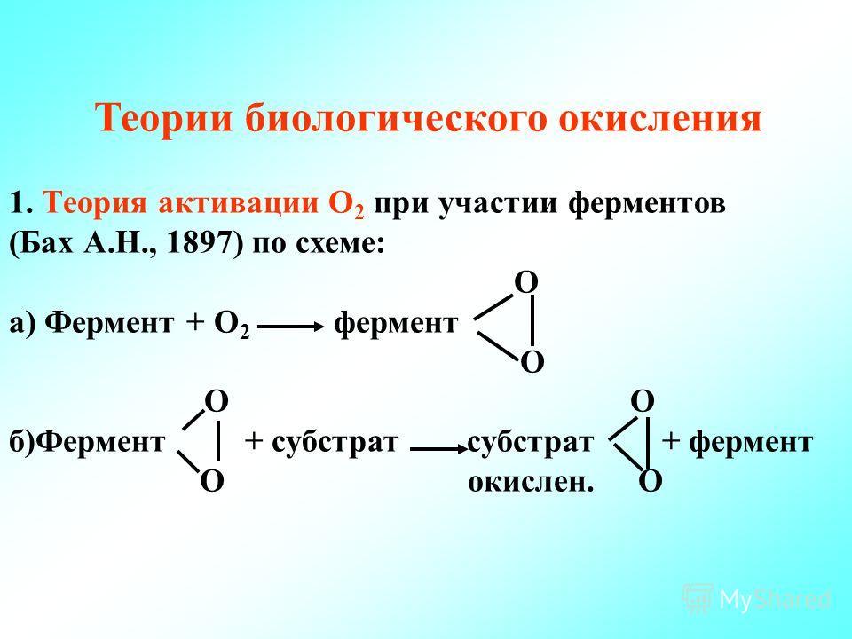 Теории биологического окисления 1. Теория активации О 2 при участии ферментов (Бах А.Н., 1897) по схеме: О а) Фермент + О 2 фермент О О б)Фермент + субстрат субстрат + фермент О окислен. О