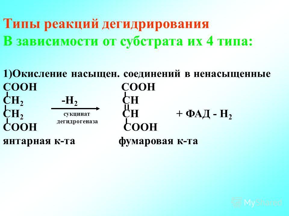 Типы реакций дегидрирования В зависимости от субстрата их 4 типа: 1)Окисление насыщен. соединений в ненасыщенные СООН СН 2 -Н 2 СН СН 2 СН+ ФАД - Н 2 СООН янтарная к-та фумаровая к-та сукцинат дегидрогеназа