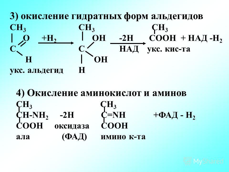 3) окисление гидратных форм альдегидов СН 3 СН 3 СН 3 О +Н 2 ОН -2Н СООН + НАД -Н 2 СС НАДукс. кис-та Н ОН укс. альдегидН 4) Окисление аминокислот и аминов СН 3 СН-NН 2 -2Н С=NН+ФАД - Н 2 СООН оксидаза СООН ала(ФАД) имино к-та