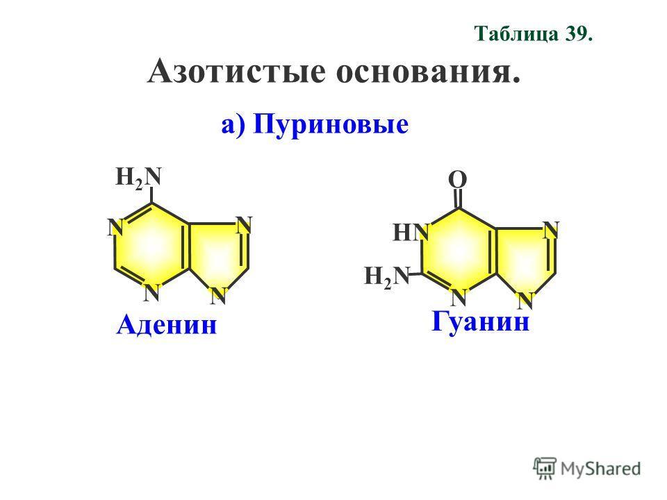 Таблица 39. Азотистые основания. N НN N О N Н2NН2N Гуанин Аденин N N N N Н2NН2N а) Пуриновые