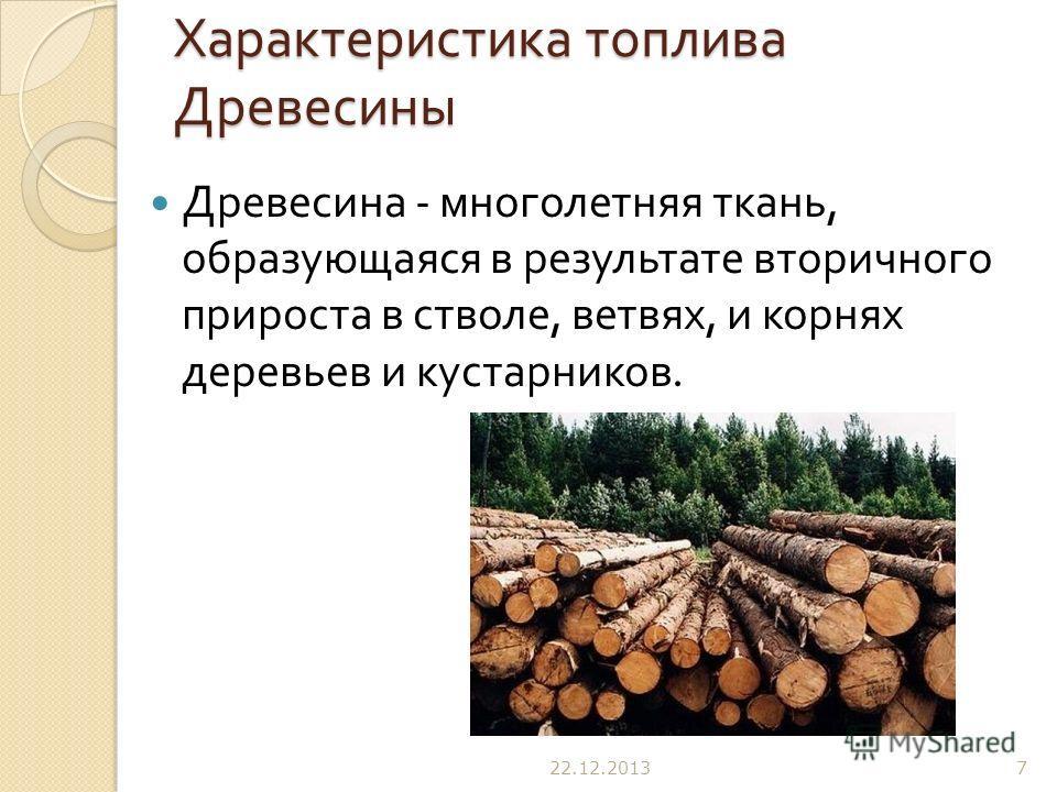 Характеристика топлива Древесины Древесина - многолетняя ткань, образующаяся в результате вторичного прироста в стволе, ветвях, и корнях деревьев и кустарников. 22.12.20137
