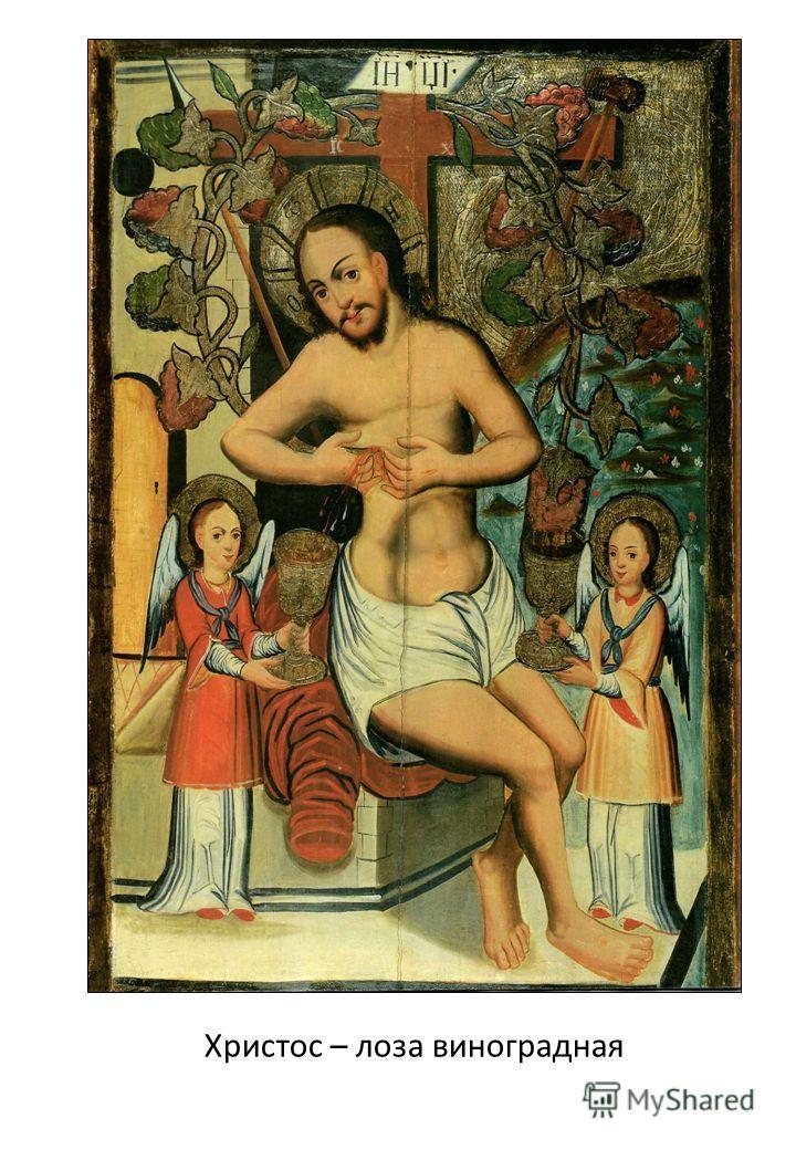 Христос – лоза виноградная