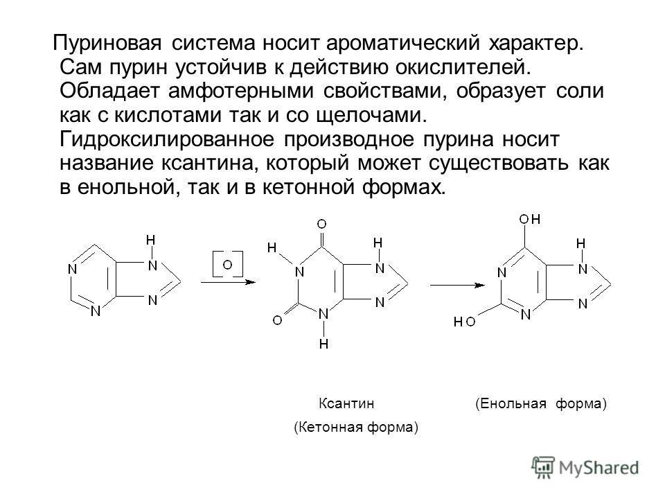 Пуриновая система носит ароматический характер. Сам пурин устойчив к действию окислителей. Обладает амфотерными свойствами, образует соли как с кислотами так и со щелочами. Гидроксилированное производное пурина носит название ксантина, который может