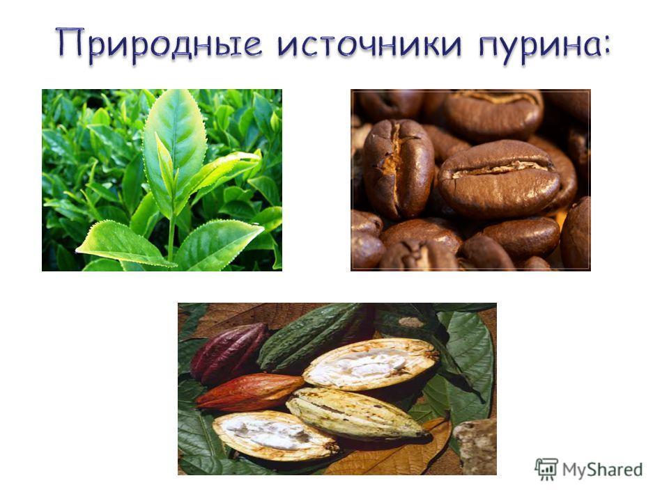 Лист чаяЗерна какао Шелуха бобов какао