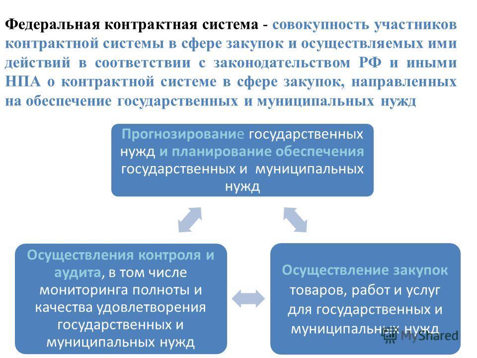 Федеральная контрактная система - совокупность участников контрактной системы в сфере закупок и осуществляемых ими действий в соответствии с законодательством РФ и иными НПА о контрактной системе в сфере закупок, направленных на обеспечение государст