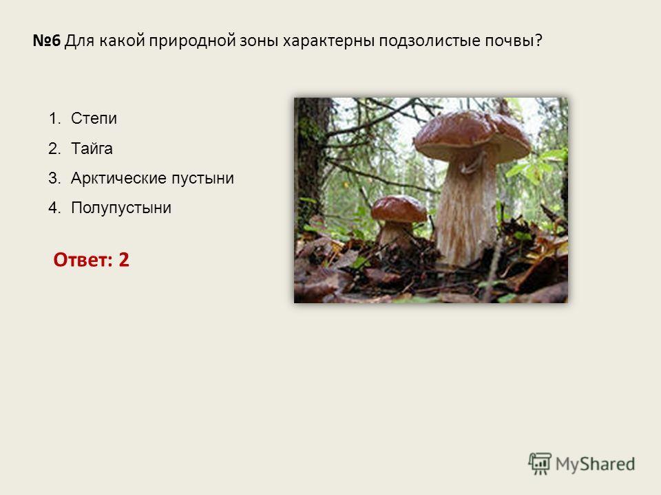 6 Для какой природной зоны характерны подзолистые почвы? Ответ: 2 1. Степи 2. Тайга 3. Арктические пустыни 4. Полупустыни