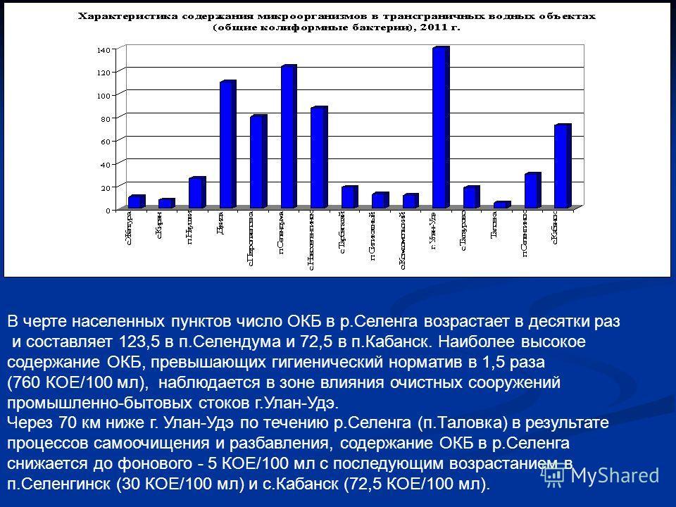 В черте населенных пунктов число ОКБ в р.Селенга возрастает в десятки раз и составляет 123,5 в п.Селендума и 72,5 в п.Кабанск. Наиболее высокое содержание ОКБ, превышающих гигиенический норматив в 1,5 раза (760 КОЕ/100 мл), наблюдается в зоне влияния