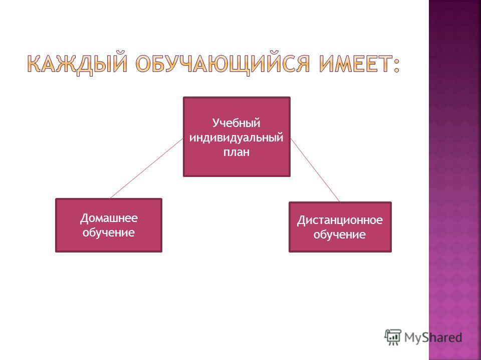 Учебный индивидуальный план Домашнее обучение Дистанционное обучение