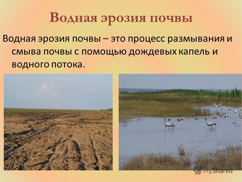 Водная эрозия почвы Водная эрозия почвы – это процесс размывания и смыва почвы с помощью дождевых капель и водного потока.