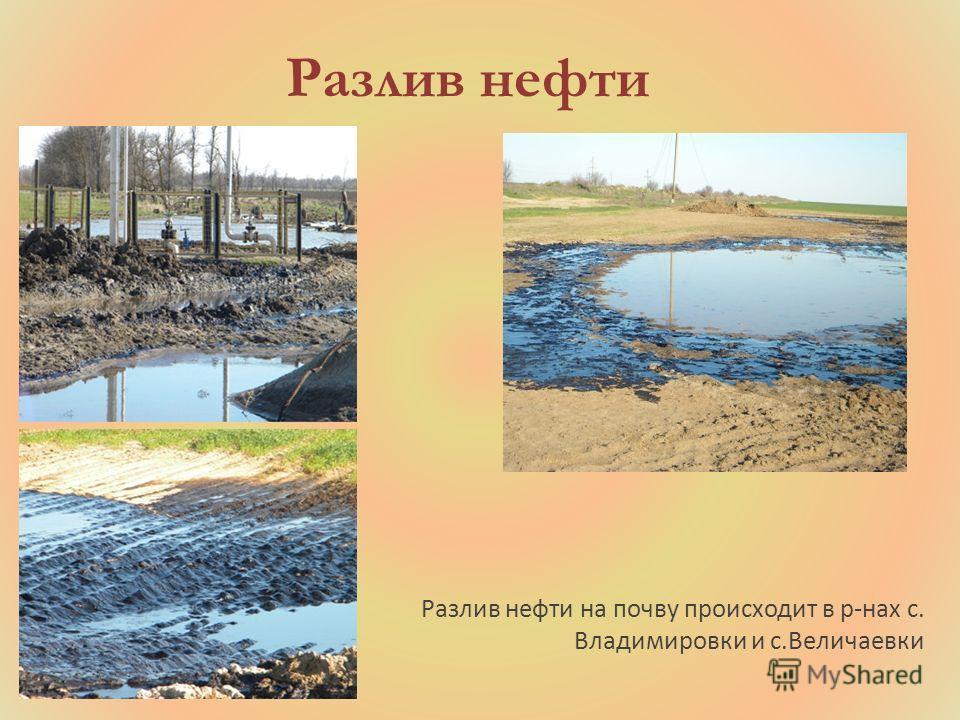 Разлив нефти Разлив нефти на почву происходит в р-нах с. Владимировки и с.Величаевки