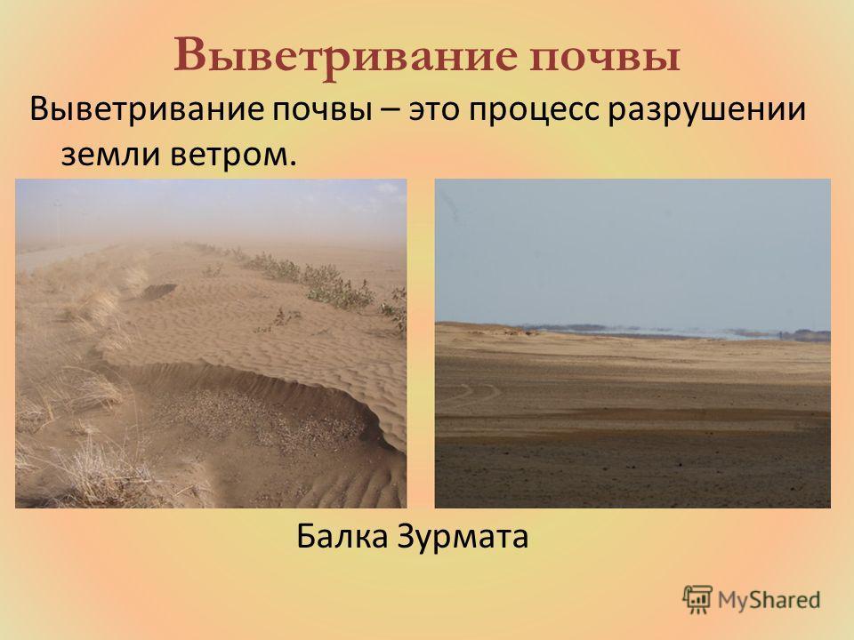 Выветривание почвы – это процесс разрушении земли ветром. Балка Зурмата Выветривание почвы