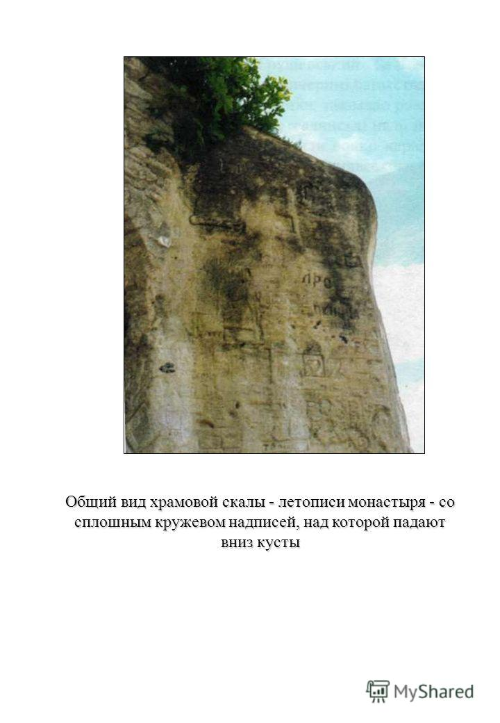 Общий вид храмовой скалы - летописи монастыря - со сплошным кружевом надписей, над которой падают вниз кусты