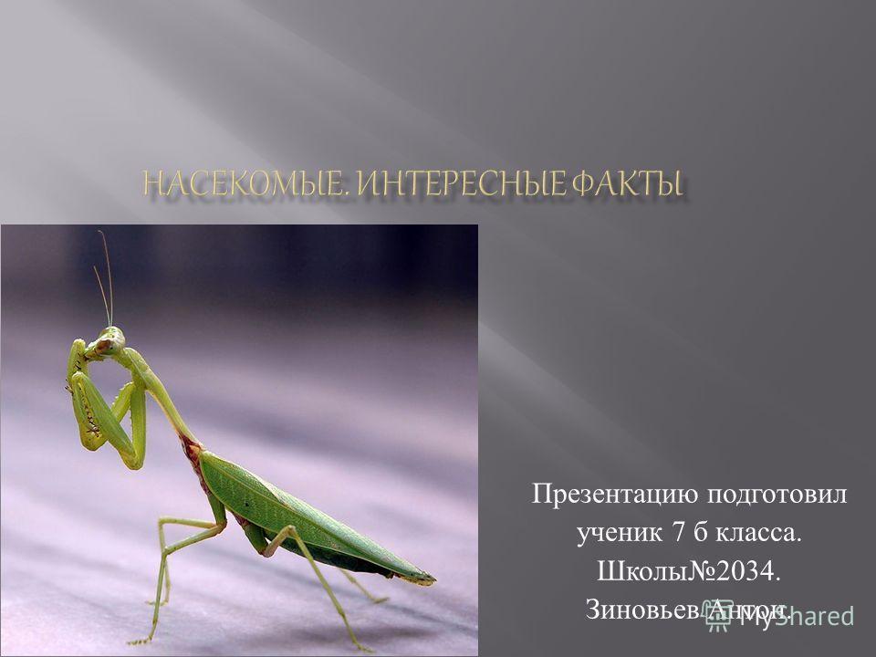 Презентацию подготовил ученик 7 б класса. Школы 2034. Зиновьев Антон.