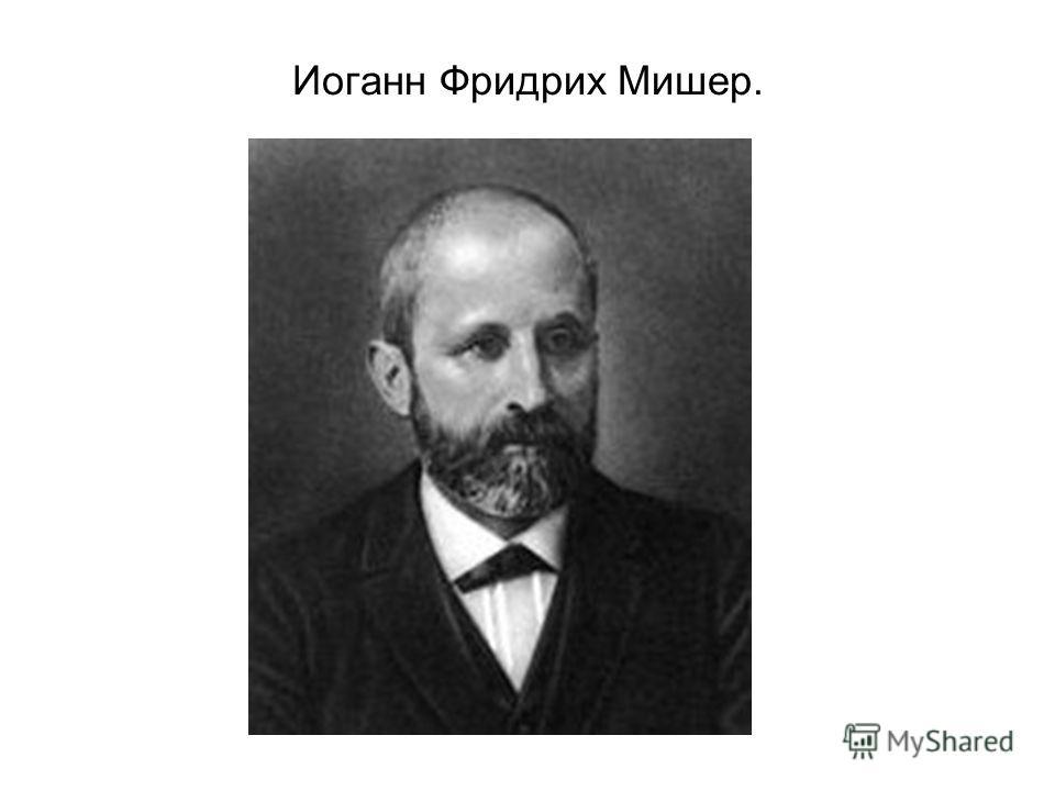 Иоганн Фридрих Мишер.