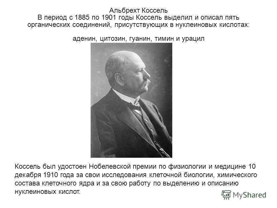 Альбрехт Коссель В период с 1885 по 1901 годы Коссель выделил и описал пять органических соединений, присутствующих в нуклеиновых кислотах: аденин, цитозин, гуанин, тимин и урацил Коссель был удостоен Нобелевской премии по физиологии и медицине 10 де