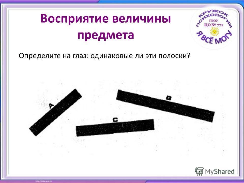 Восприятие величины предмета Определите на глаз: одинаковые ли эти полоски?