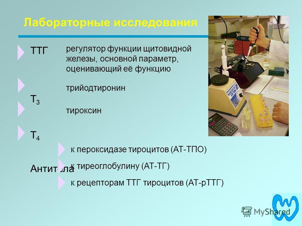 ТТГ T 3 T 4 Антитела Лабораторные исследования регулятор функции щитовидной железы, основной параметр, оценивающий её функцию трийодтиронин тироксин к пероксидазе тироцитов (АТ-ТПО) к тиреоглобулину (АТ-ТГ) к рецепторам ТТГ тироцитов (АТ-рТТГ)