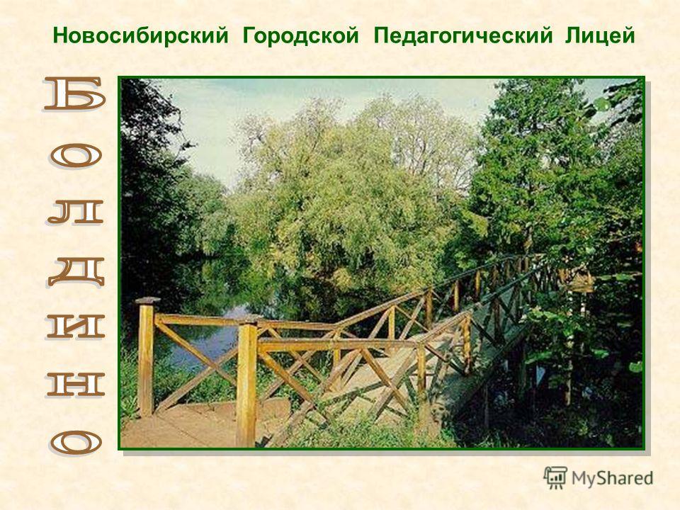 Новосибирский Городской Педагогический Лицей