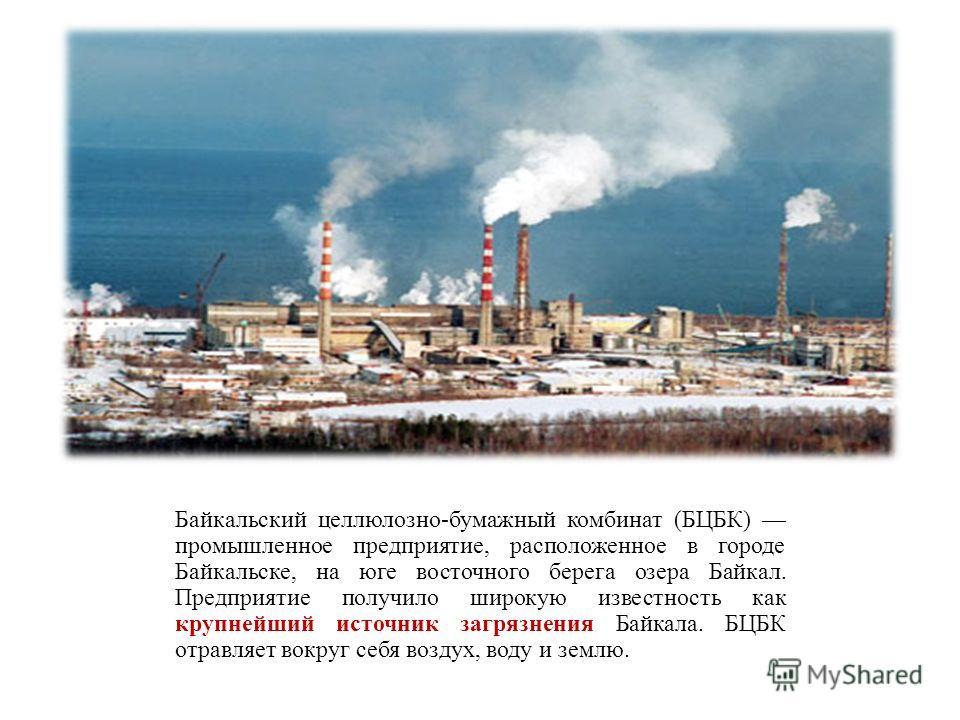 Байкальский целлюлозно-бумажный комбинат (БЦБК) промышленное предприятие, расположенное в городе Байкальске, на юге восточного берега озера Байкал. Предприятие получило широкую известность как крупнейший источник загрязнения Байкала. БЦБК отравляет в