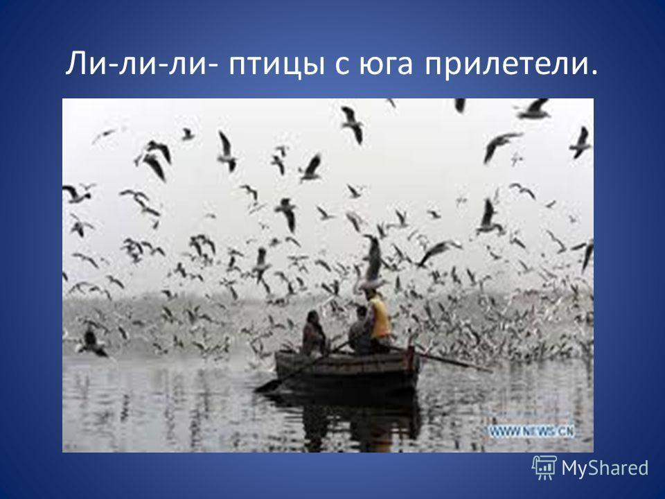 Ли-ли-ли- птицы с юга прилетели.
